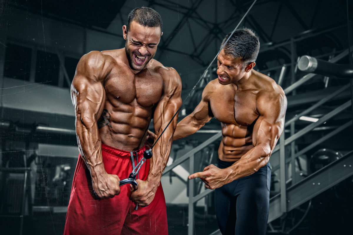 Hypertrophie Fitness